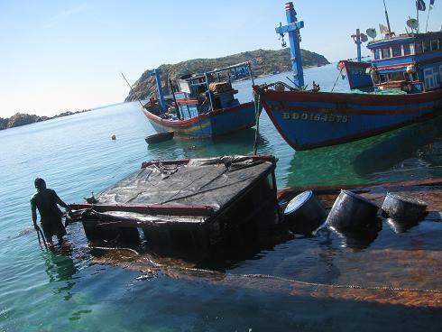 tràn dầu trên biển việt nam