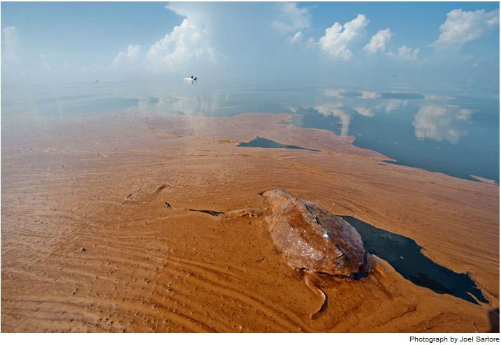tràn dầu huỷ hoại môi trường nước