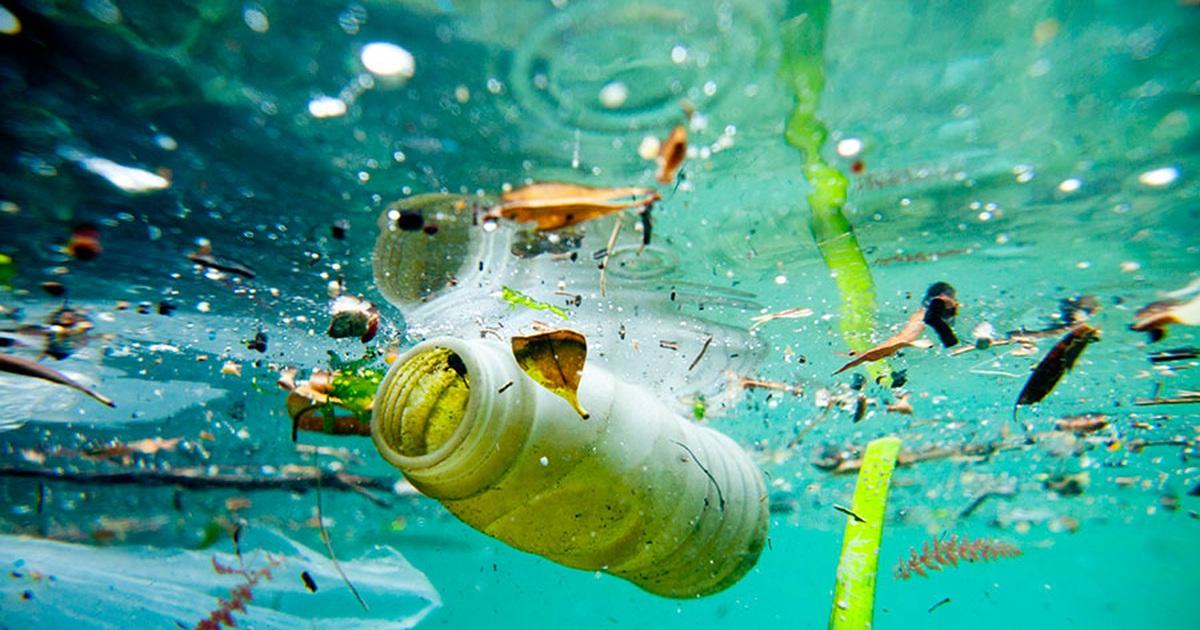 ô nhiễm nguồn nước biển